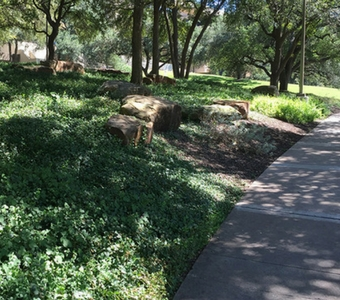 Landscaping and Grounds