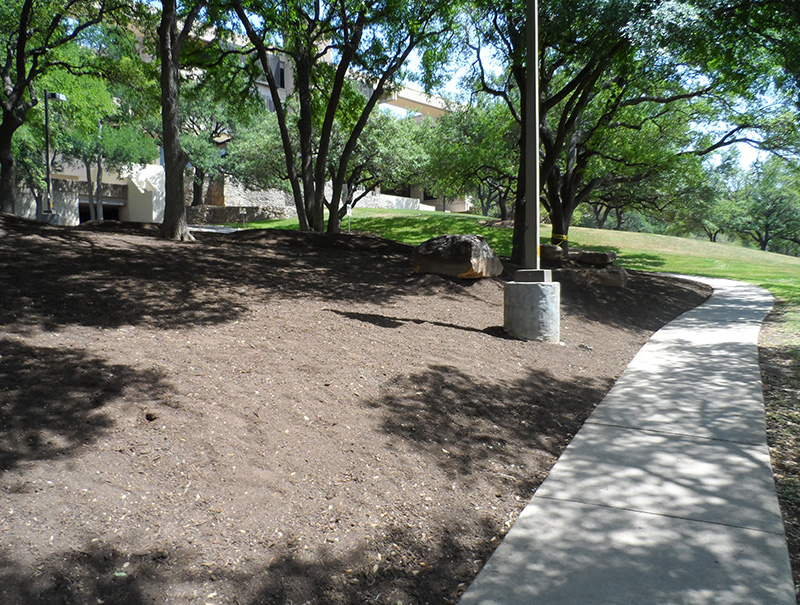 Before shot of San Antonio Landscaping