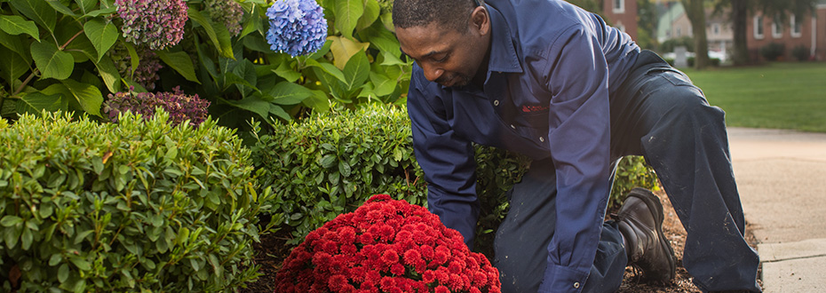 Landscaping Services – C&W Services